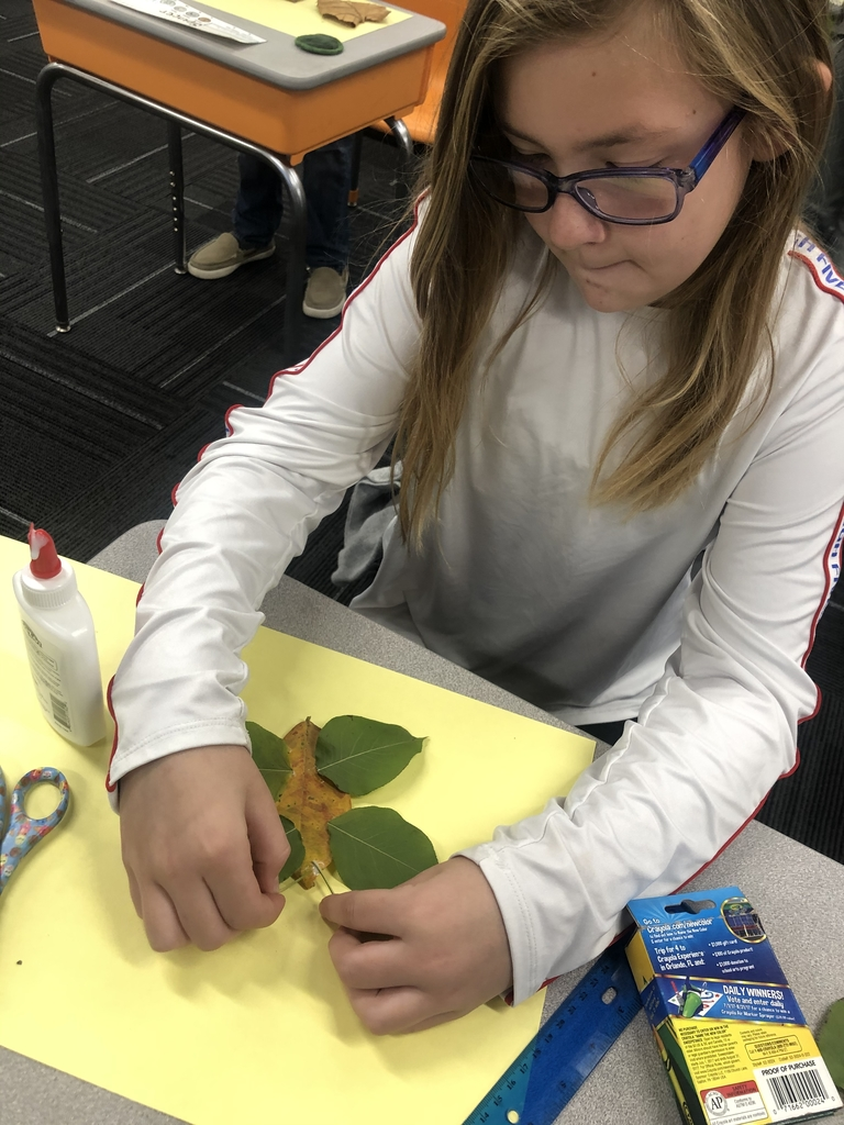 Making a leaf butterfly.